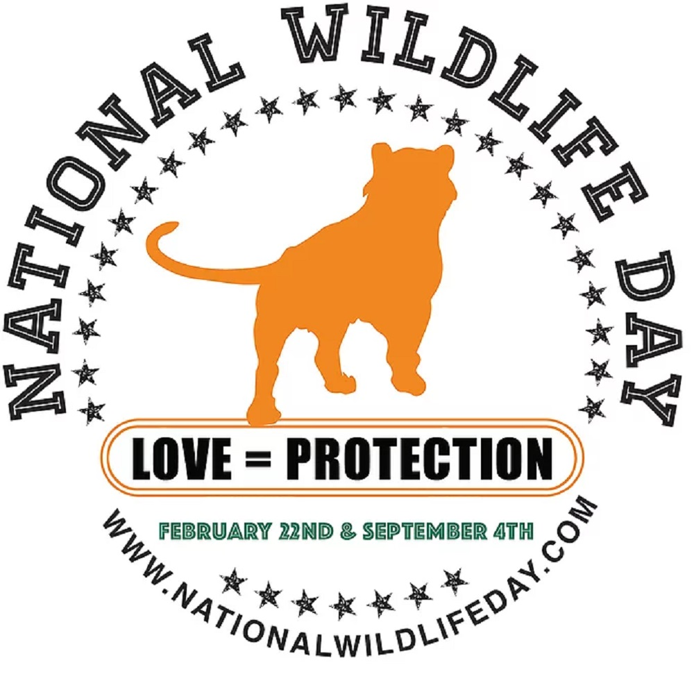Happy national wildlife day