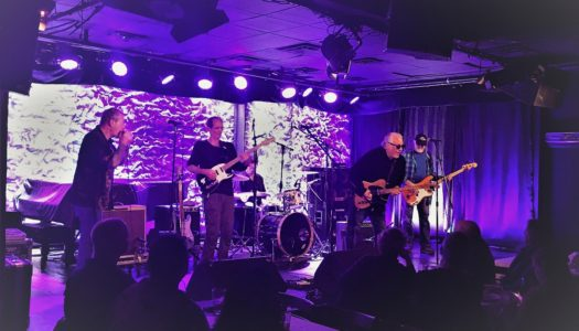 Nighthawks and Bob Margolin Get Muddy at Iridium