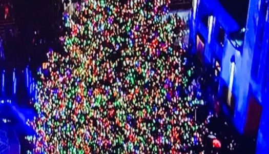 Rockefeller Tree Lighting Sparks Holiday Season