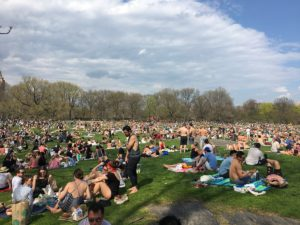 Sunday afternoon in Central Park